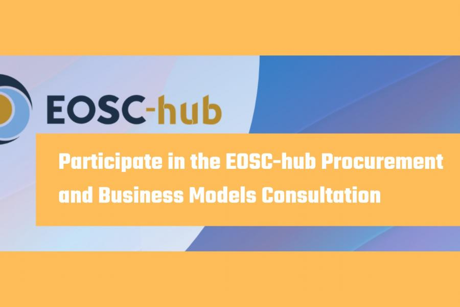 Participate in the EOSC-hub Procurement and Business Models Consultation